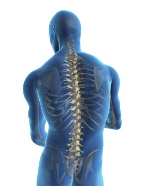 human-back-and-spine-backgrounds-wallpapers-human-back-and-spine-design